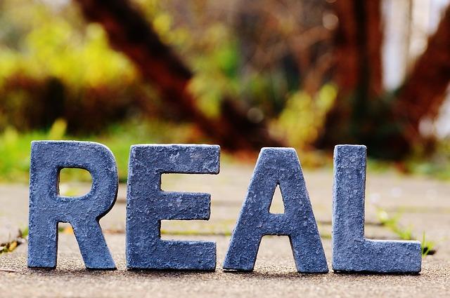 slovo realita